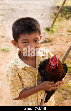 Indonesien, Sulawesi, Labundo Bundo Dorf, Kind hält Haushuhn - Stockfoto