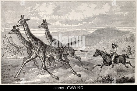 Britische Forscher Sir Samule Baker Jagd Giraffe - Stockfoto