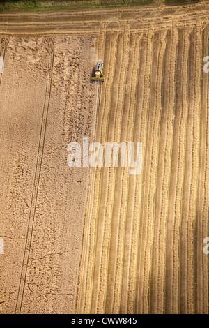 Ernte, North Derbyshire - Stockfoto