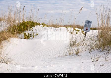Hinweises Lebensraum Restaurierung Bereich in Sanddünen entlang der Küste im Fort De Soto county Park in Tierra - Stockfoto