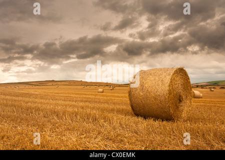 Frisch geerntete Feld mit Weizen Stoppeln und Stroh Ballen in der englischen Landschaft wie die Sonne ist schwach. - Stockfoto