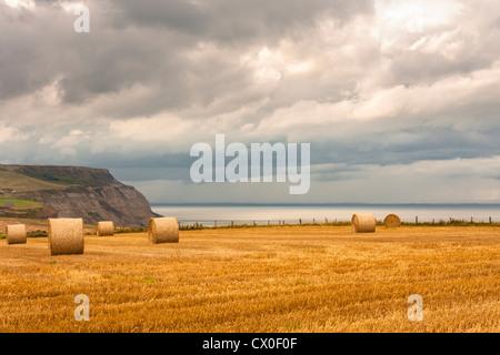 Frisch geerntete Feld mit Weizen Stoppeln und Strohballen in der englischen Landschaft mit Boulby Cliff im Hintergrund. - Stockfoto
