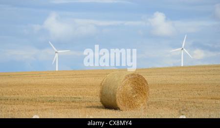 Ländliche Idylle - Strohballen auf die geernteten Feld - Stockfoto
