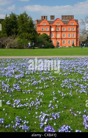 Der Schnee Blumenpracht in den Rasen in der Nähe von Kew Palace im Frühjahr, Royal Botanic Gardens, Kew, UNESCO - Stockfoto