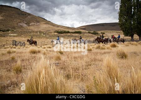 Reiten, Patagonien, Argentinien.