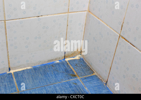 Verlassenes Haus Badezimmer mit alten defekten Wc, gerissene Fliesen ...