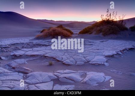 Getrocknete Schlamm im flachen Sanddünen Mesquite, Death Valley Nationalpark, Kalifornien, Vereinigte Staaten von - Stockfoto