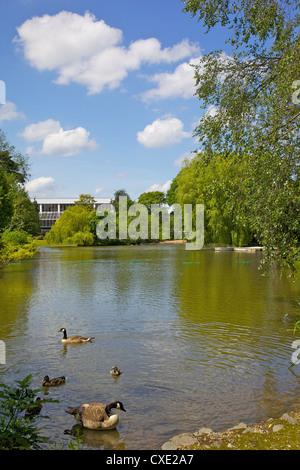 Queens Park, Chesterfield, Derbyshire, England, Vereinigtes Königreich, Europa - Stockfoto
