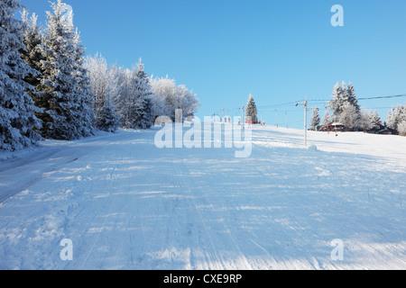Verschneiten Winterwald und gerändelten breite Wanderwege. - Stockfoto