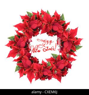 Adventskranz aus Weihnachtsstern - Stockfoto