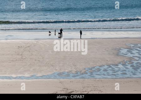 Ein paar walking ihre drei Hunde am Strand in Sutherland Schottland - Stockfoto