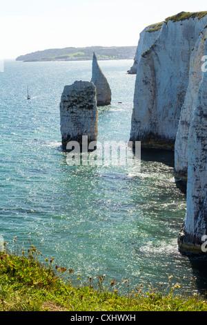 Old Harry Rocks Handfast Zeitpunkt, Studland auf der Isle of Purbeck, Jurassic Küste von Dorset, England. - Stockfoto