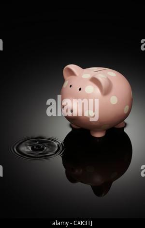 Sparschwein mit Tropfen von Wasser in der Pfütze - Stockfoto