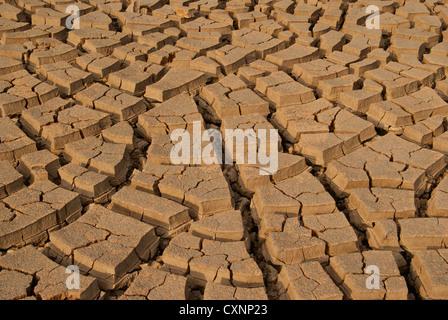 Lehm-Böden-Muster und Texturansicht aus Kerala Indien an trockenen Sommersaison gebrochen - Stockfoto