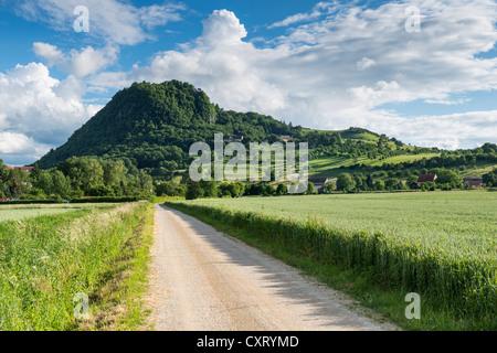 Schotterstraße, Wanderweg nach dem Hohenhewen Vulkan, Hegau-Landschaft, Singen, Baden-Württemberg - Stockfoto
