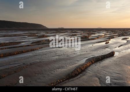 Wattwanderungen an der Sand-Bucht mit Birbeck Pier in der Ferne. In der Nähe von Weston-super-Mare. Somerset. England. - Stockfoto