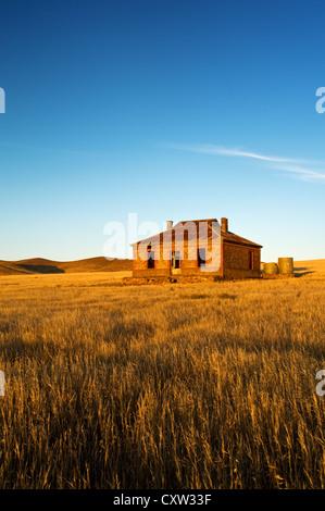 Cobb & Co Cottage Ruine im Abendlicht. - Stockfoto