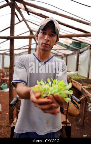 Biolandbau, junger Mann in einer Gärtnerei Jungpflanzen von Salat in den Händen hält Landwirtschaft College CECTEC, - Stockfoto