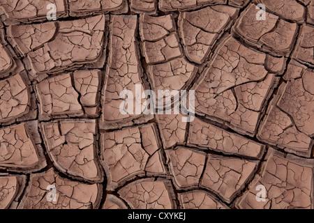 Geknackt Bodentrockenheit eines Flussbettes, argentinischen Anden, Uspallata, Mendoza Provinz, Argentinien, Südamerika, - Stockfoto