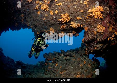 Taucher in einer Höhle im flachen Wasser, mit einer kleinen Ausfahrt 6 Meter unter der Oberfläche, Wände mit Schwämmen, - Stockfoto