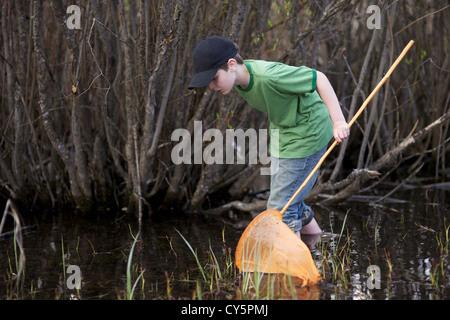 Kleiner junge Spaß fangen Frösche mit Frosch netto im Sommer - Stockfoto