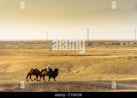 Ein Mann fährt zwei Bactrian Kamele entlang der Wüste Jiayuguan Pass in den Hexi-Korridor, Provinz Gansu, China - Stockfoto