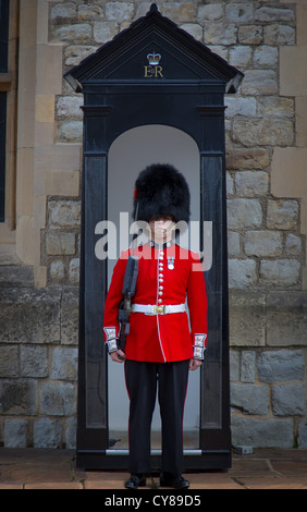 Soldat in rote Tunika und Bärenfell Kappe an der Tower of London - Stockfoto