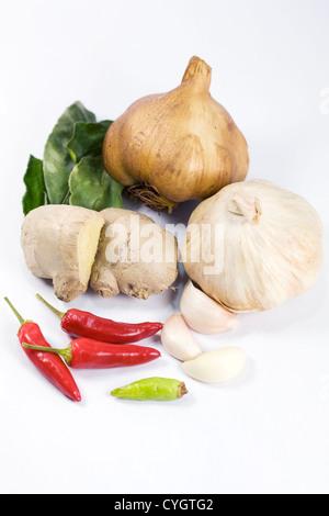 Eine Auswahl von frischen und getrockneten Kräuter und Gewürze vor einem weißen Hintergrund. - Stockfoto