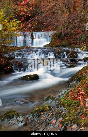 Stockghyll Kraft-Wasserfall in der Nähe von Ambleside im Lake district - Stockfoto