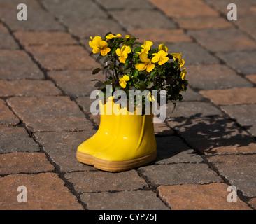 Gelbe Stiefmütterchen Topf, Miniatur regen Stiefel Frühling fantasy Blumenkübel Topf Nahaufnahme mit gelben Stiefmütterchen - Stockfoto