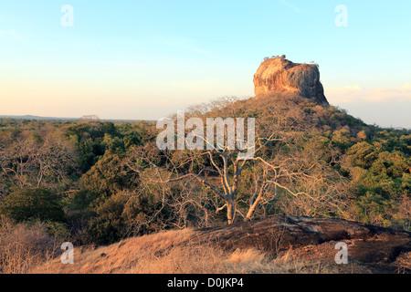 Sigiriya Lion Rock antiken Tempel in Sigiriya, Sri Lanka. - Stockfoto