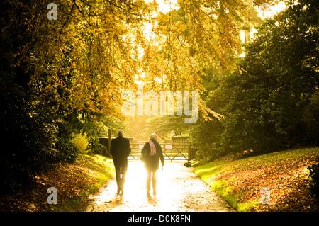 Ein älteres Ehepaar zu Fuß durch die herbstliche Sonne Nymans Gardens. - Stockfoto