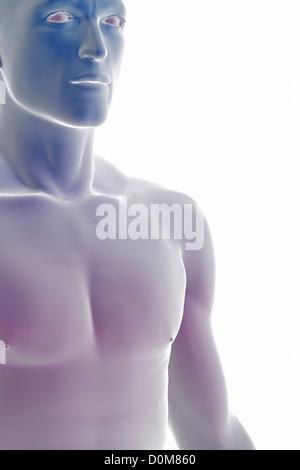 Stilisierte Dreiviertelansicht von der Oberfläche Anatomie Torso ...