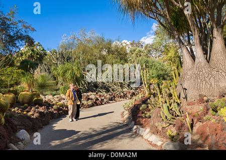 Ein paar genießen den Blick auf den Wüstengarten an der Huntington-Bibliothek und botanischen Gärten. - Stockfoto