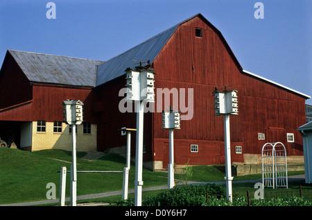 Vintage Red Barn auf einer Amish Farm und Weiß Purple Martins, Holmes County, Ohio, USA, Vereinigte Staaten, Martin - Stockfoto