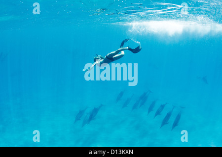Hawaii, Lanai, Hulopoe Bay, Frau Schnorcheln in der Nähe von Herde von Delfinen (Stenella Longirostris) unter Wasser. - Stockfoto
