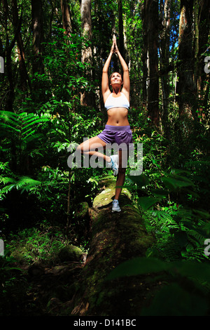 Hawaii, Oahu, junges Weibchen tun Yoga In einem üppigen Wald. - Stockfoto