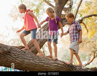 USA, Utah, Lehi, drei Kinder (4-5, 6 und 7) balancieren auf Ast und gehen zusammen Hand in Hand - Stockfoto