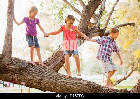USA, Utah, Lehi, drei Kinder (4-5, 6 und 7) balancieren auf Ast - Stockfoto