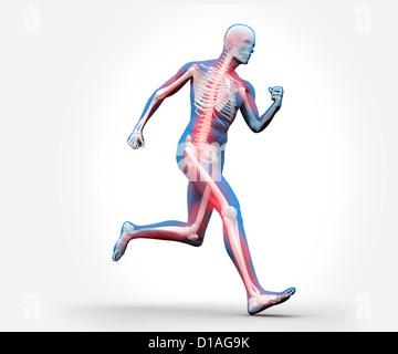 Blaue und rote digitale Skelett laufen - Stockfoto
