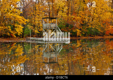 Herbst voller Farben Wald mit Reflexionen im Spiegel des Wassers und der schwimmende Holz Turm - Stockfoto