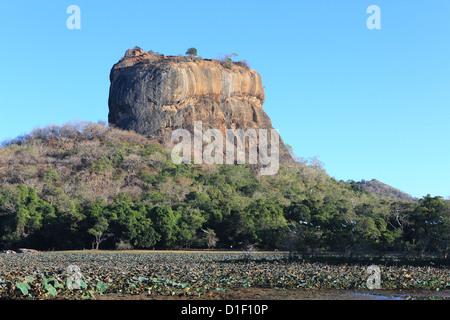 Sigiriya Lion Rock alte Festung und Palast Ruine in Sigiriya, Sri Lanka - Stockfoto