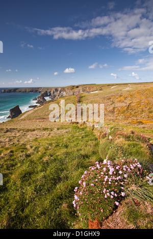 Blick auf das Bedruthan Steps auf der North Cornwall Küste, Cornwall, England, Vereinigtes Königreich, Europa - Stockfoto