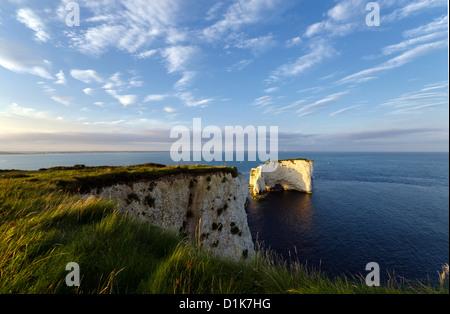 Sommer im Old Harry Rocks in der Nähe von Swanage auf Dorset Jurassic Coast - Stockfoto