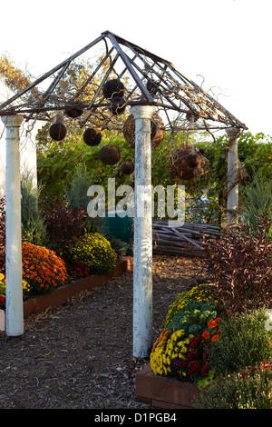 garten spalier mit herbst dekoration stockfoto bild. Black Bedroom Furniture Sets. Home Design Ideas