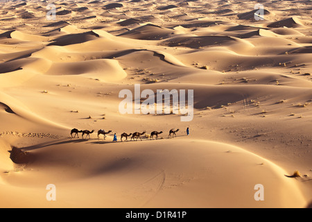 Marokko, M' Hamid, Erg Chigaga Dünen. Wüste Sahara. Kameltreiber und Kamel-Karawane. - Stockfoto