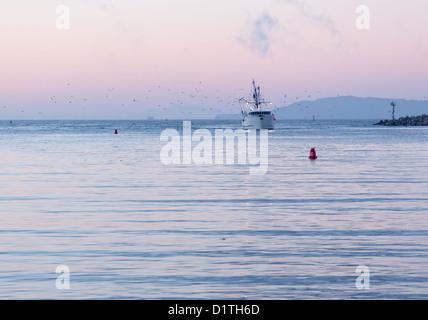 Angeln Boot Trawler Hafen von Ventura in der Morgendämmerung mit Lichtern und Vögel nach Eingabe - Stockfoto
