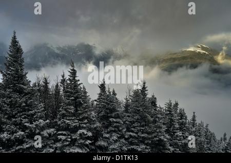 Blick vom Gipfel des Wildcat-Skigebiet in New Hampshire im Frühwinter - Stockfoto