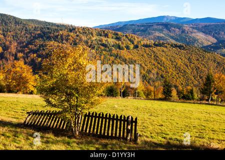 Beskiden im Herbst, Polen - Stockfoto