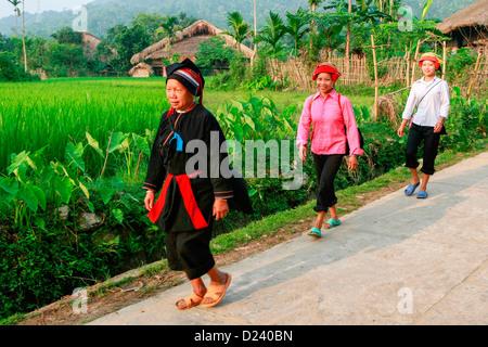 Vietnamesische Frauen, die zu Fuß nach Hause tragen Wasser ...